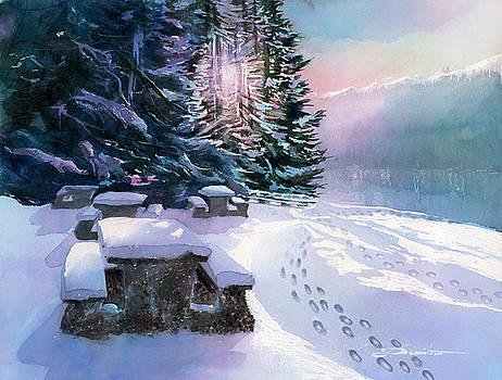 Foot prints on snow-Port Moody by Dumitru Barliga