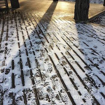 Foot Prints by Sarah Vandenbusch