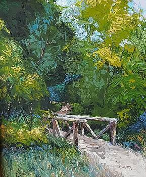 Footbridge at Van Meter Park by Jerrold Carton