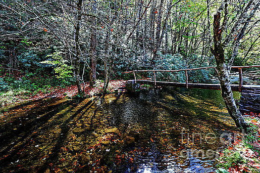 Footbridge Over Rough Creek by Paul Mashburn