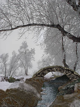 Footbridge Over the Creek by Julie Rodriguez Jones