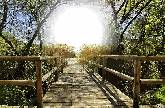 Footbridge To The Beach by Clive Littin