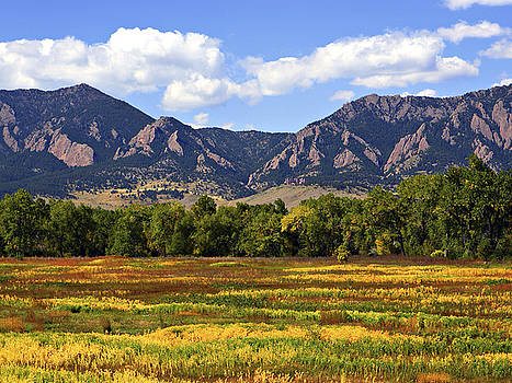 Foothills of Colorado by Marilyn Hunt