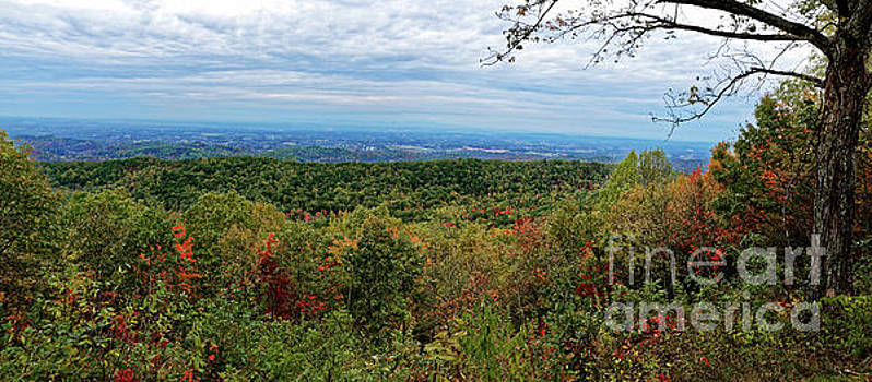 Foothills Parkway Fall by Paul Mashburn