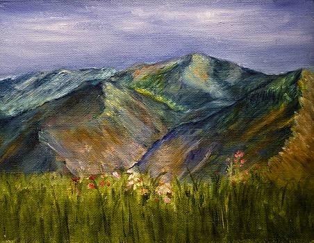 Foothills by Tabetha Landt