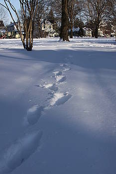 Footprint In The Snow by Bessie Reyes
