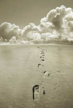 Footprints in sand by Mal Bray