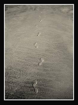 Footprints in the Sand by Rosanne Jordan