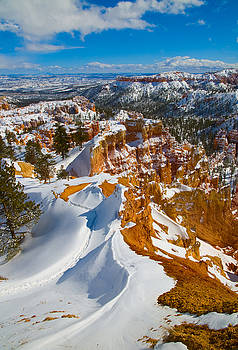 Footprints in the Snow by Edwin Voorhees