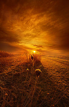 For A Breath I Linger by Phil Koch
