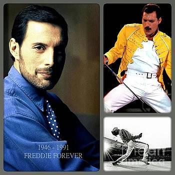 For Freddie  by John S