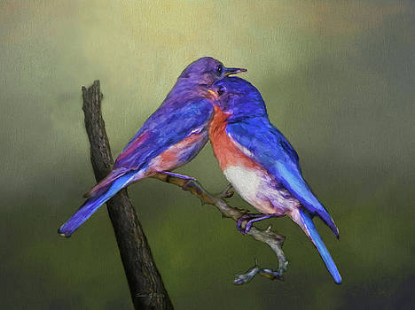 For Love Of Bluebirds by Sandi OReilly
