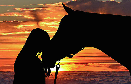 For the Love of Horses 012 by Ericamaxine Price