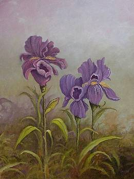 For the Love of Iris by Jim Stratton