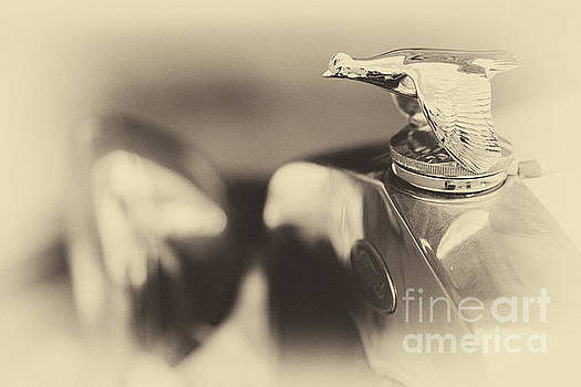 Vintage Ford, hood ornament - guese by Vyacheslav Isaev