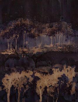 Forest adventure by Melanie Meyer