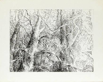 Forest Around the City by Misha Lapitskiy