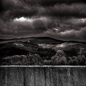 Forest Behind The Wall by Bob Orsillo