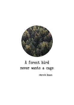 Forest Bird Wants No Cage by Eleanore Ditchburn