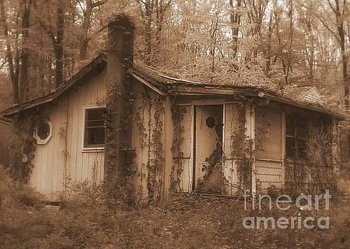 Forest Cottage by Vicki Lynn Sodora