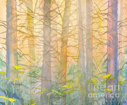Forest Curtain by Teresa Ascone