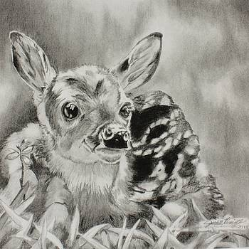 Forest Fawn by Judith Pennington
