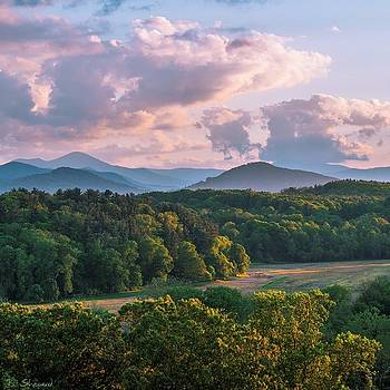 Forest, Field, Mountains, Clouds by Brian Shepard