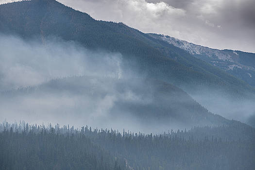 Forest Fire At Rogers Pass Canada by Steve Gadomski