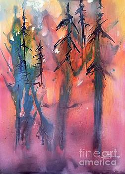 Forest Fire by Shane Guinn