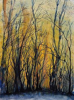 Forest Fire by Vallee Johnson