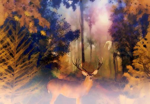 Valerie Anne Kelly - Forest Glen