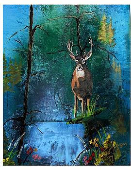 Forest Heaven by Wayne Ligon