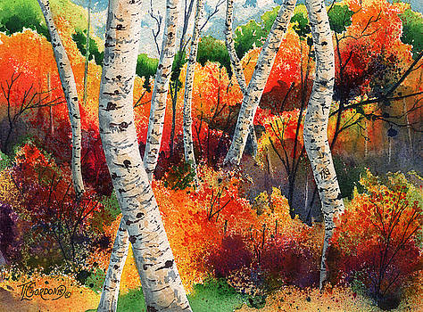 Forest in color by Timithy L Gordon