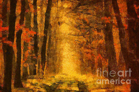 Dimitar Hristov - Forest Leaves