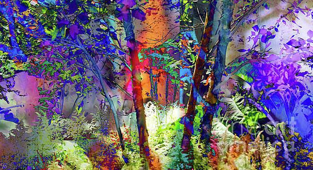 Forest Light by LemonArt Photography