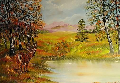 Forest Oasis by James Higgins