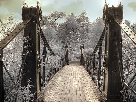 Forest Park Victorian Bridge Saint Louis Missouri infrared by Jane Linders