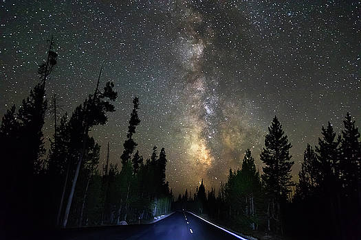 Forest Road Milky Way Night Cruising by James BO Insogna