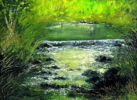 Forest stream by Boris Garibyan