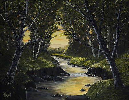 Forest Stream by John Reid
