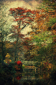 Angela Doelling AD DESIGN Photo and PhotoArt - Forest Vintage