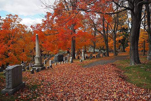 Forestdale Cemetery in Autumn by Trace Meek