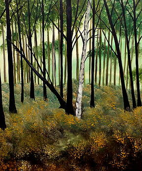 Forestry by Lisa Aerts