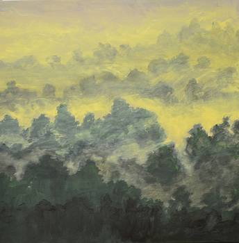 Forest's Morning Blanket by Jim Ellis