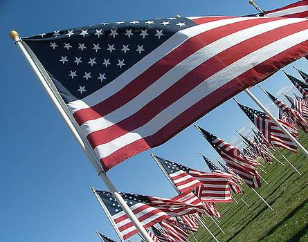 Forever Flags by Dawn Blair
