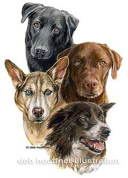 Forever Home The Tales of Four Lucky Dogs by Deb Hoeffner
