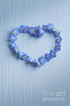 Forget Me Not Heart by Jan Bickerton