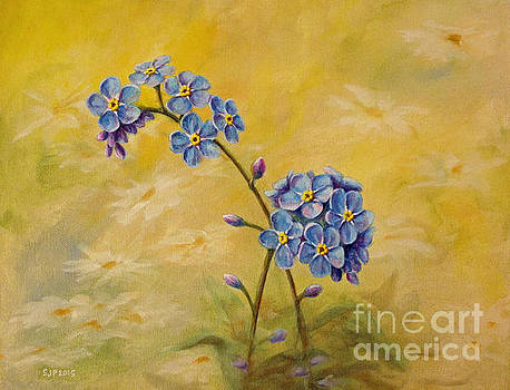 Forget Me Not by Sarah Pederson