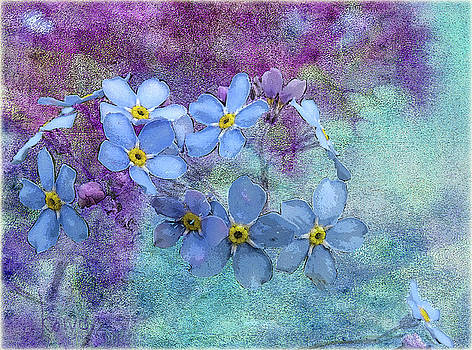 Forget-Me-Nots by Fred Denner