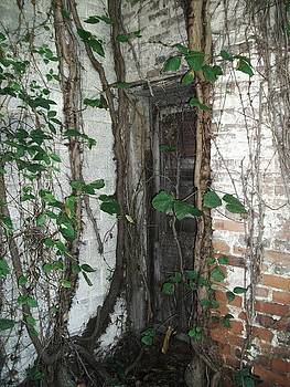 Forgotten Door by Sherry  Kepp